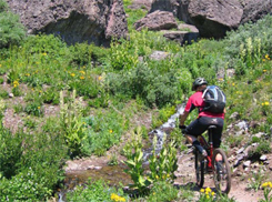 mountain bike trails, adventure cycling